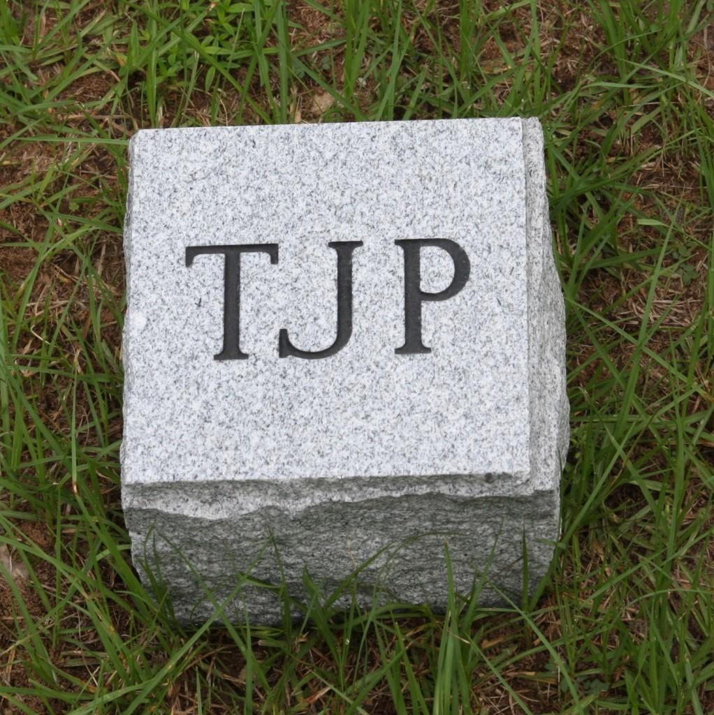 unplanted stone
